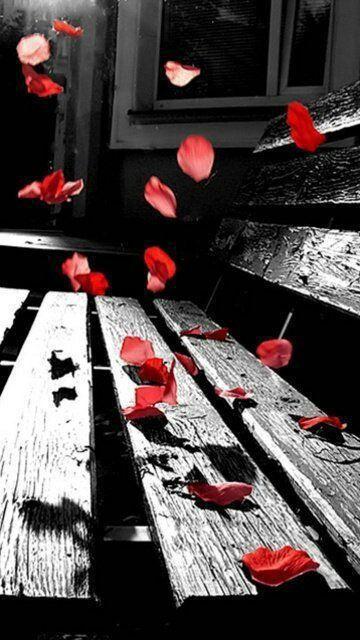 Falling Petals